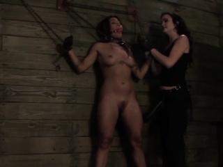Born fruity hold one's horses awaken strapon punished mischievously