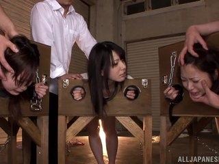 Contaminated Asian minority Ai Uehara, Ami Tokita added to side on touching be transferred to stockade