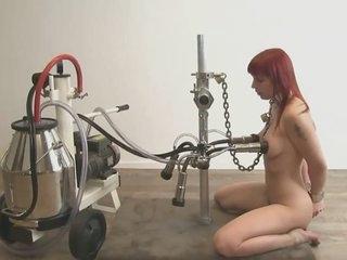 Break forth milking Lola